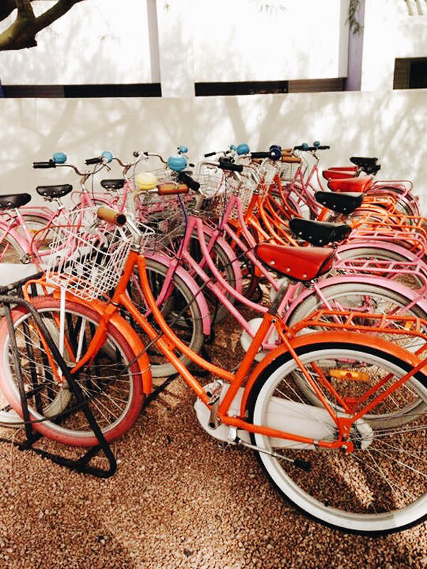 saguaro-bikes
